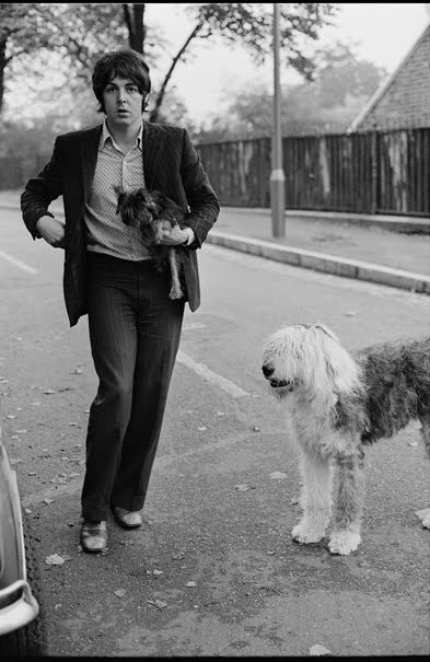 martha_my_dear_paul_mccartney_dog